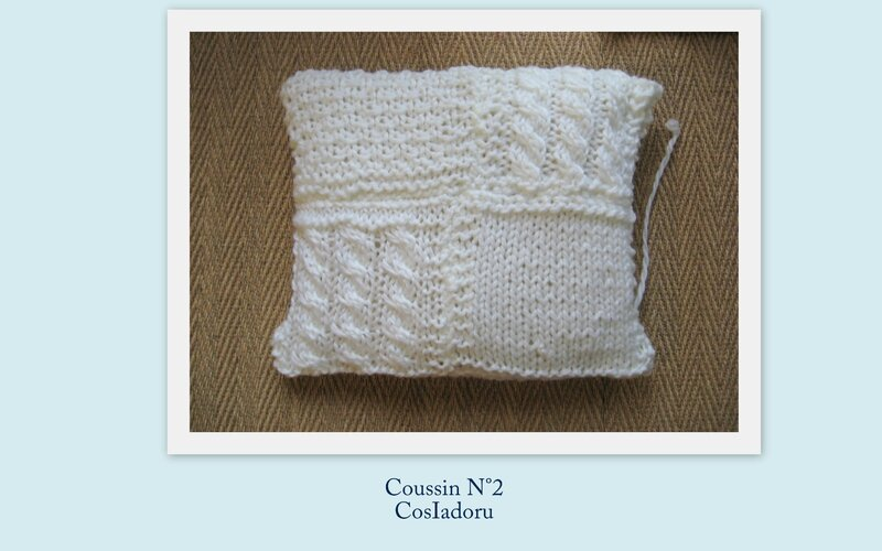 coussin N°2