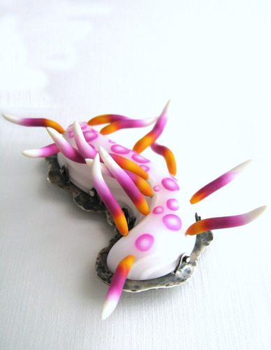 Nudibranche chevelu