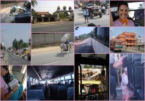 Mudumalai_Mysore2