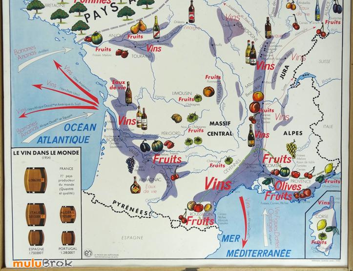 Collection  Carte scolaire LA LOIRE et ses affluents / VIGNE et