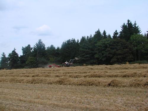 2008 09 02 Aprés le grain la paille
