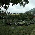 stand de plantes