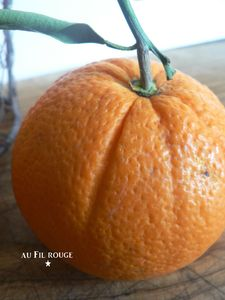 Oranges amres 4