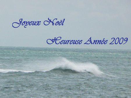 JoyeuxNoel_Heureuse_Annee_2009