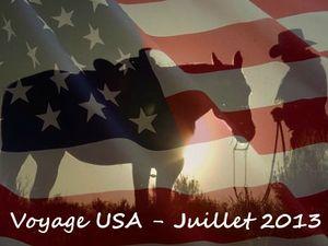 Road Trip Ouest américain - juillet 2013 - Le coffre de Gloewen et scrat (3)
