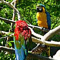 zoo AG (98).JPG