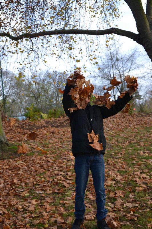 l'automne de monsieur O (2) - 1