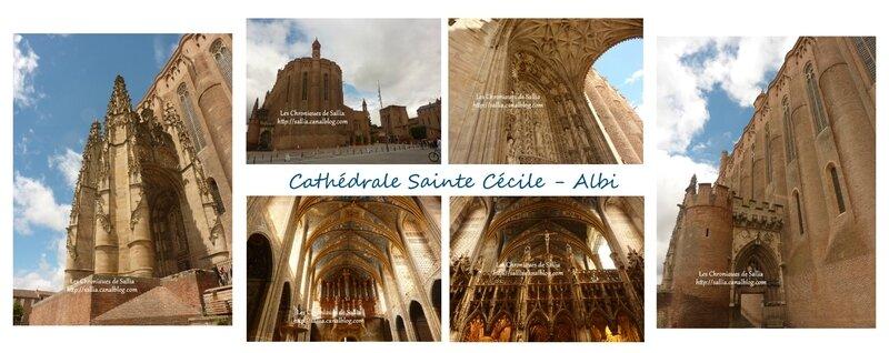 cathédrale ste cecile albi