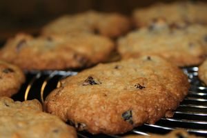 risotto et cookies 052