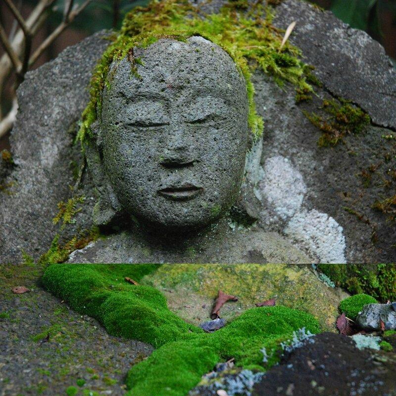 Repos Hakone 1