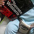 Les secrets de wisteria -elizabeth chandler {livre 1: megan}