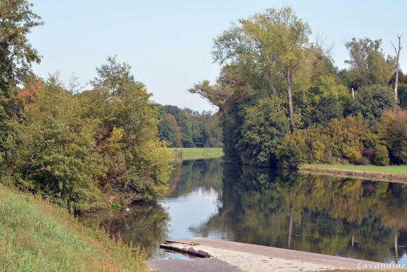 canal de décharge erstein 09 17 (6)
