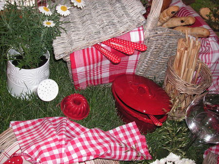 table_picnic_029