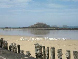 Saint Malo juin 2013 028