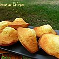 Madeleines au Citron