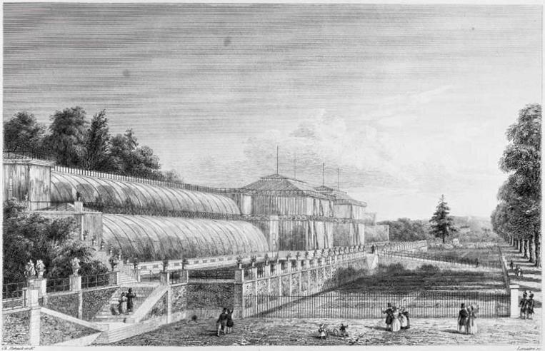 Les anciennes serres du jardin des plantes charles for Exposition jardin paris 2016