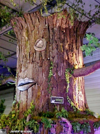 L'arbre, témoin du temps