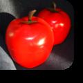 Paire de pommes à glaçons - 25 €