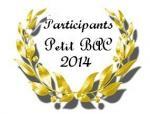 petit bac 2014 - Copie (2)