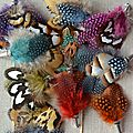 Broches plumes mariage A&T