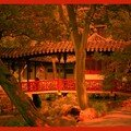 Les jardins de suzhou