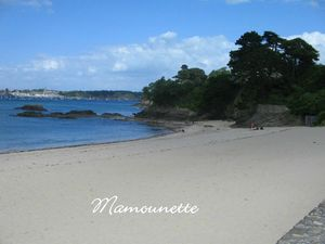 Vacances Bretagne juin 2012 001
