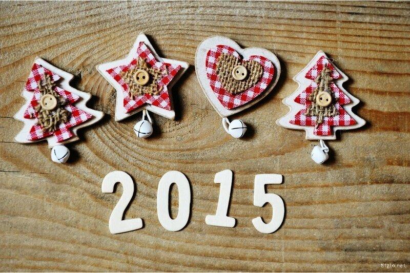 bonne-annee-2015-et-meilleurs-voeux-960x640