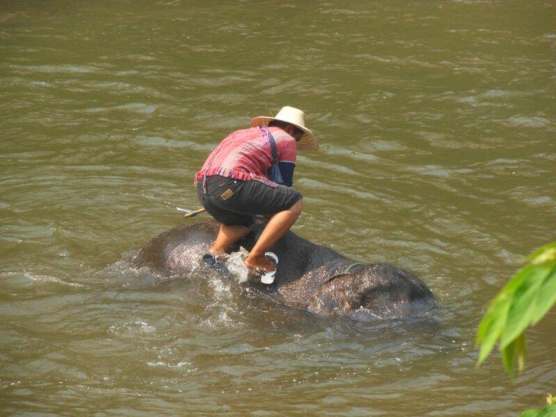 Thailande 19 mars 2014 192
