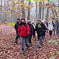 2014 Randonnées pédestres en ILE de FRANCE