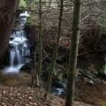 2009 04 20 Un petit ruisseau à côté du Lignon vers Mars en Ardèche en bordure de la Haute-Loire (17)