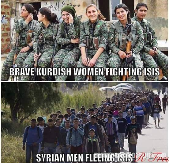 humour ps collabo syrie refugie lache kurde daech islam