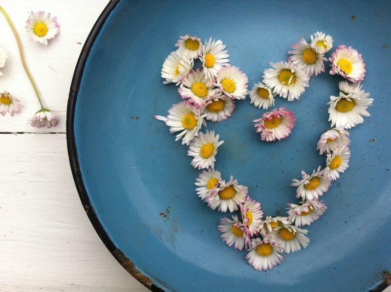 l'atelier trucsbidules - coeur de paquerettes