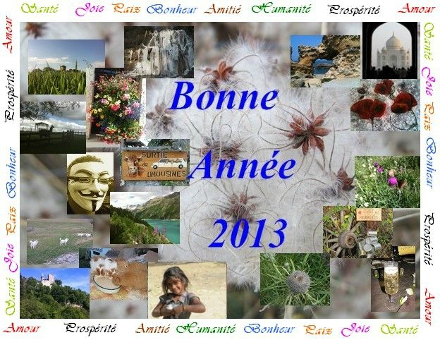 bonne anne 2013