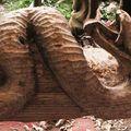 Le Serpent surgit du bois