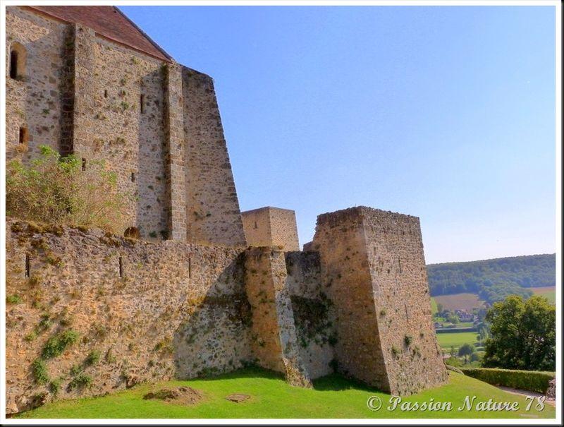 Le château de la Madeleine (8)