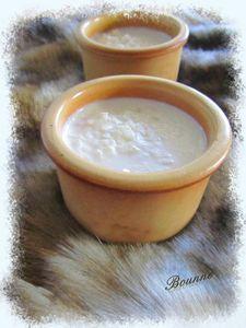 riz au lait à la noix de coco (1)