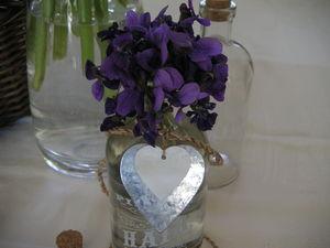 violettes_010