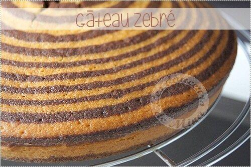 Gâteau_Zebré019