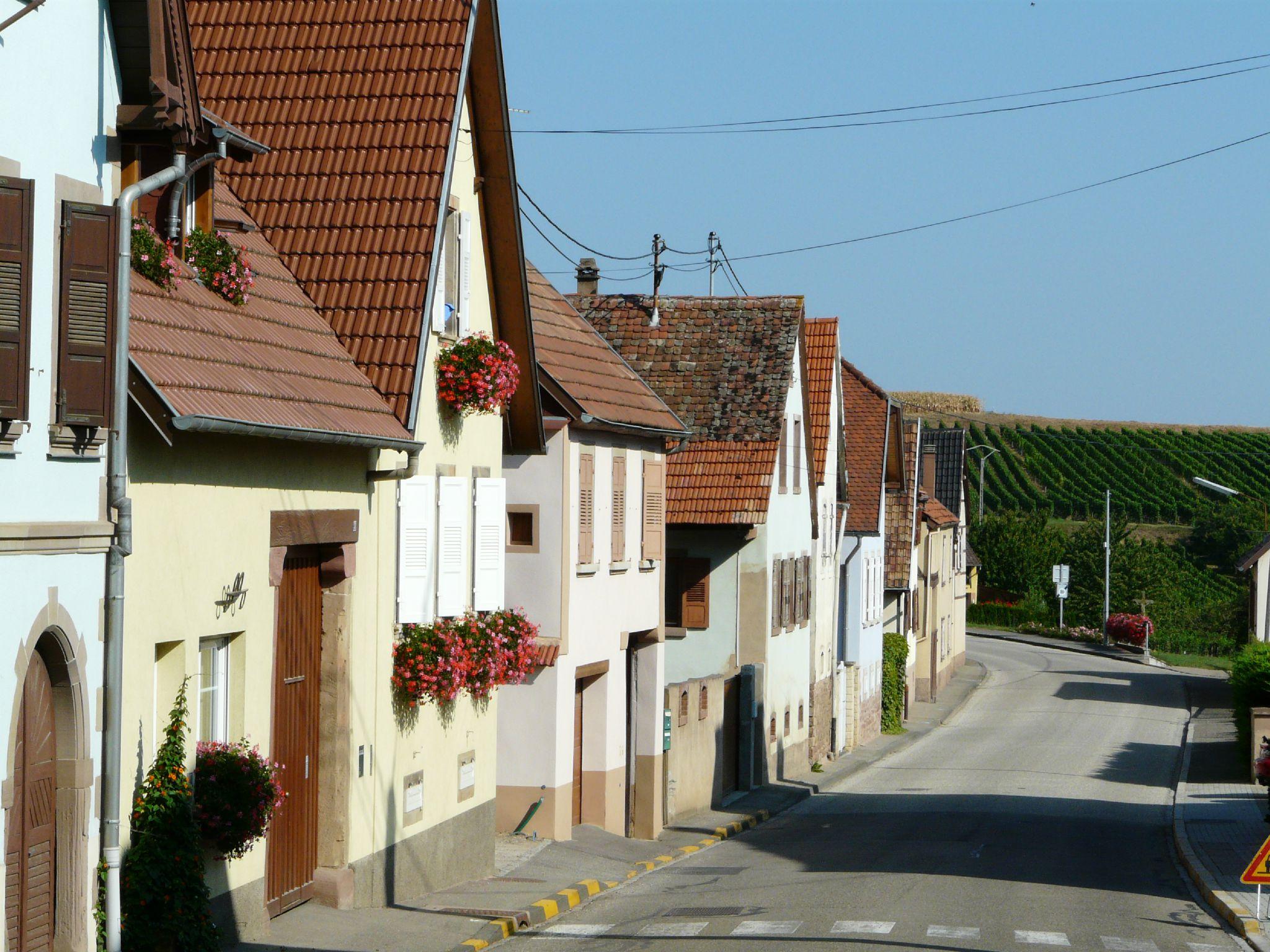 Dahlenheim (3)