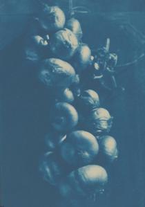 daguerotype1850chapeletoignons1