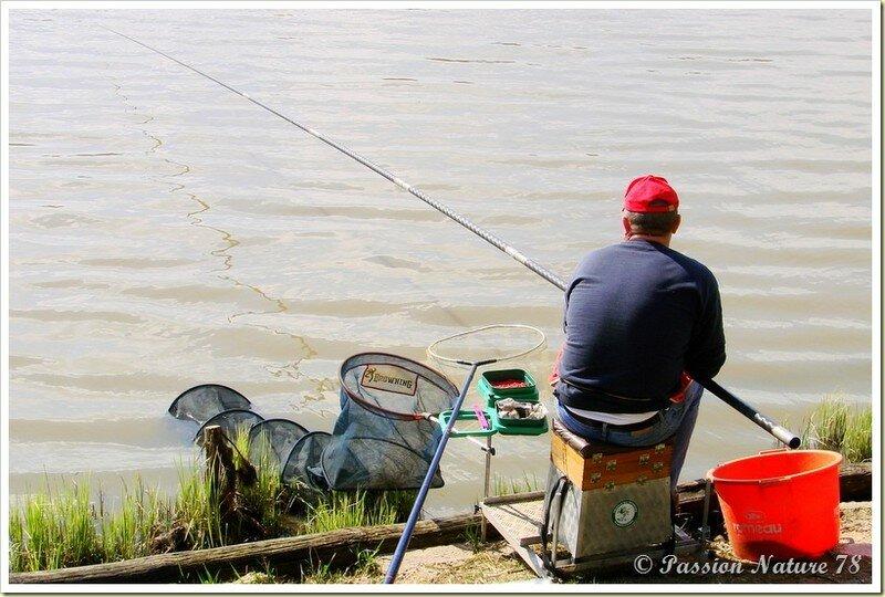 Pêche à l'Etang de la Tour (13)