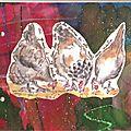 coq et poules 003