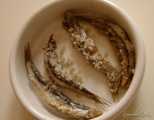 anchois