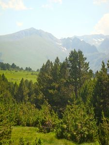 plateau Beille