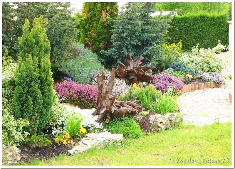 Petite promenade dans notre jardin (18)