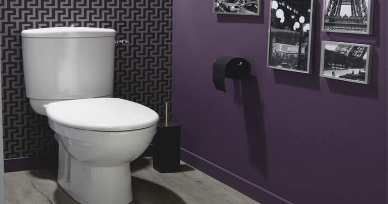 idee-deco-wc-et-decoration-toilettes-design