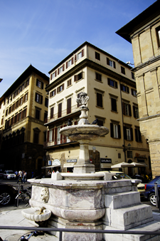 Florence (24)