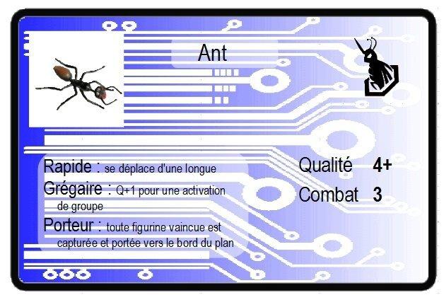 cartes_bug2