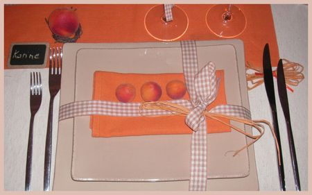 2009_07_07_table_abricots10