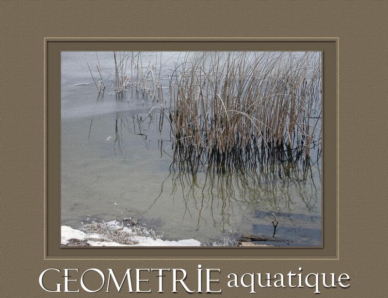 Géométrie aquatique